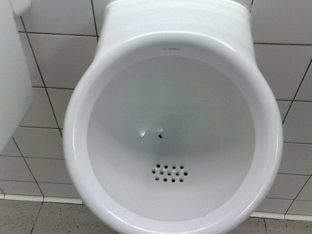 Зачем в аэропортах Амстердама в унитазах лежат ненастоящие мухи