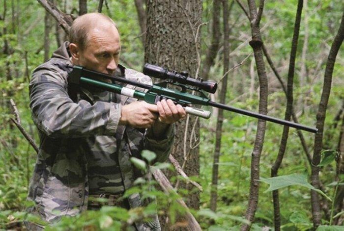 Как тигр Путина убежал в Китай
