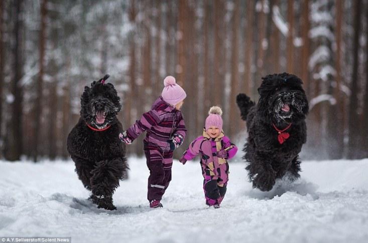 Варвара, 3 года, Василиса, 5 лет, и их черные русские терьеры Кадриль и Хоббит.