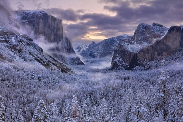 100 самых красивых зимних фотографии: пейзажи, звери и вообще
