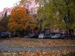 Herbst-8