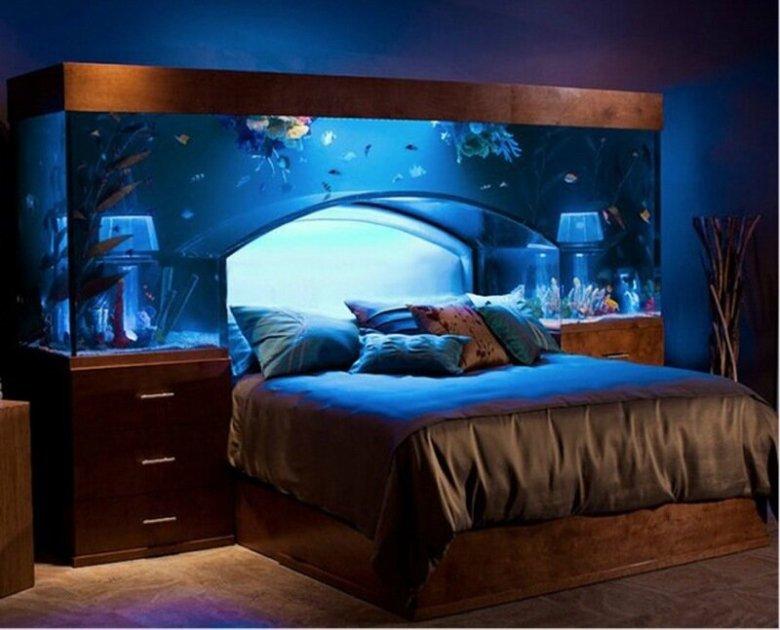 Эволюция рыбьего жилья: необычные аквариумы (фото)