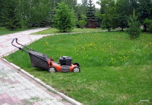 Уход за газоном