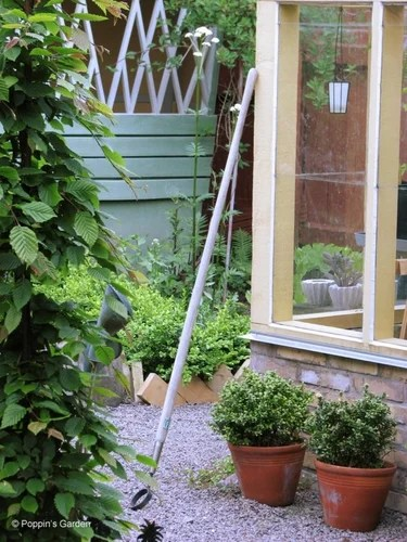 дизайн сада и двора на даче фото