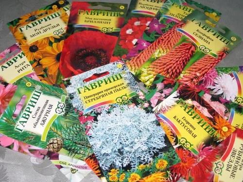 Почему не всходят семена цветов