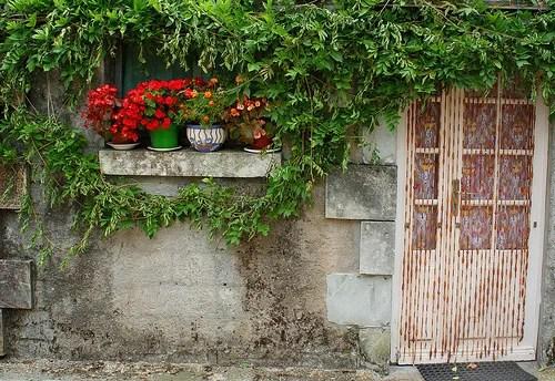 дачный дизайн цветы в кадках украсить фасад дома и двор