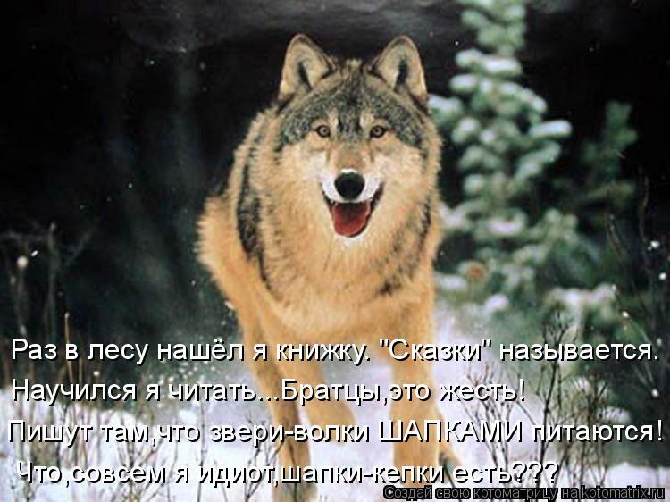волк и красная шапочка855765.jpg