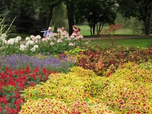 дизайн цветников и клумб