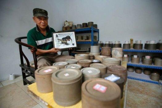 Как проходит чемпионат Китая по боям сверчков
