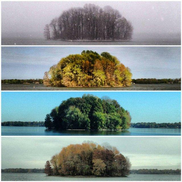 Чотири сезони на одній картинці
