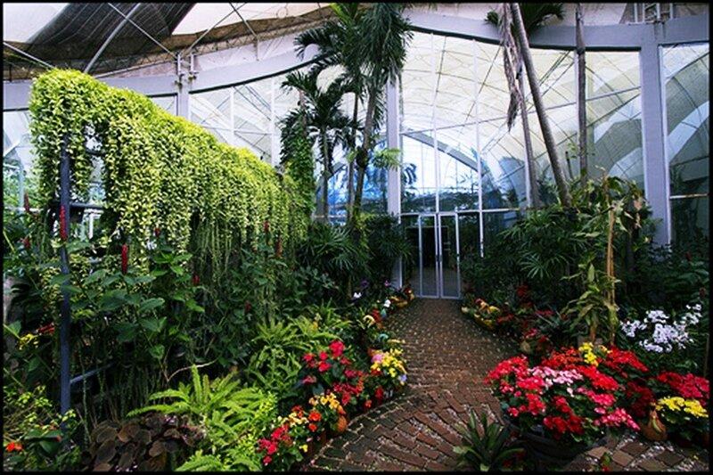 Что такое «зимний сад»?