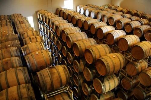 Чилийские вина высшего качества составляют конкуренцию лучшим европейским винам