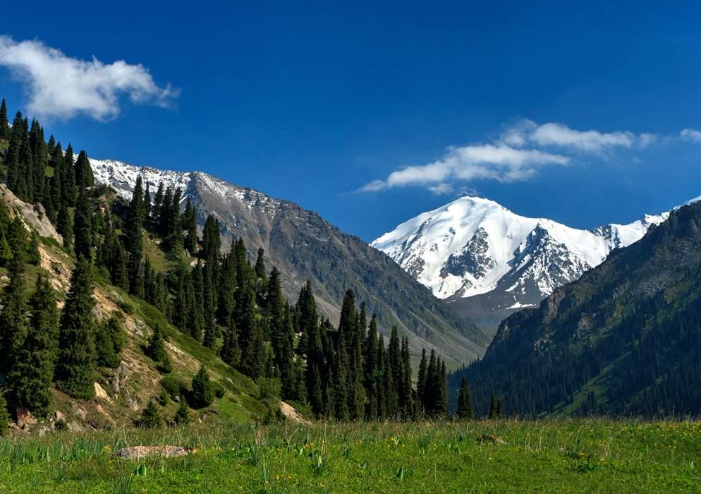 безалаберности, какие фото горы тянь шань замечаем, как жизнь