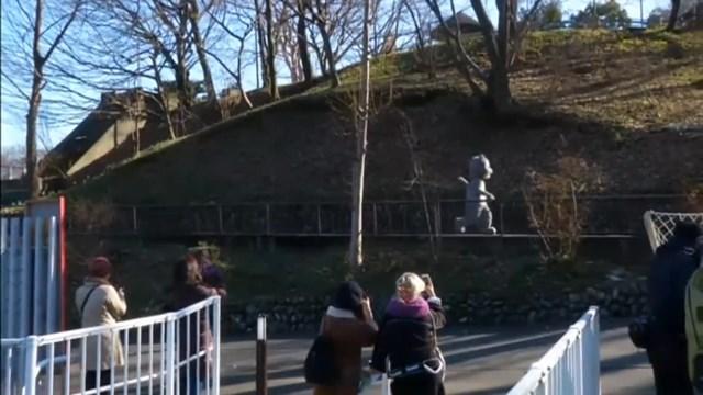 Как ловят людей в смешных костюмах животных на учениях в зоопарке Токио