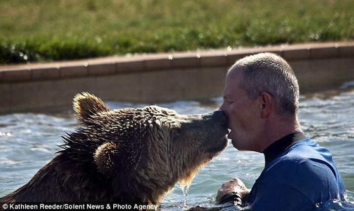 Пугающие и смертельно опасные игры с медведем гризли (фото)
