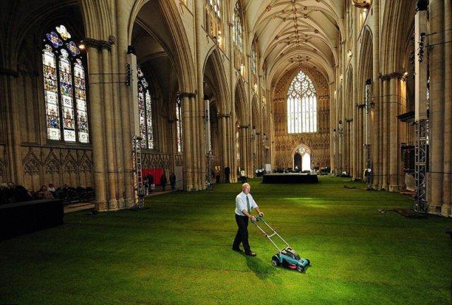 Травяное покрытие Йоркского кафедрального собора