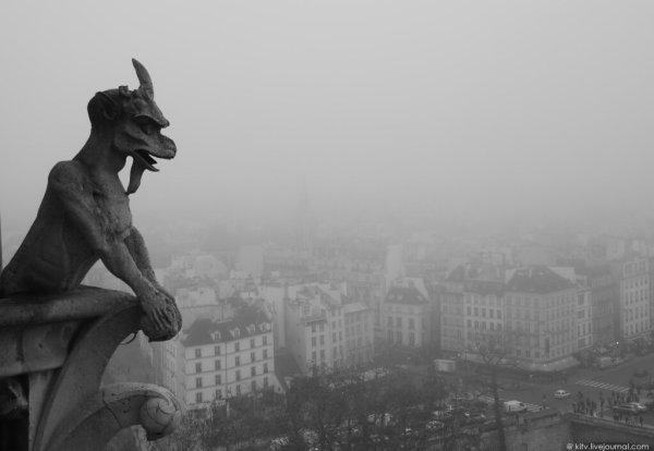 Черно-белый Париж: kitv