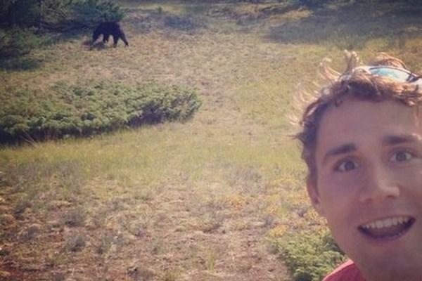Почему в Америке запрещены селфи с дикими медведями барибалами