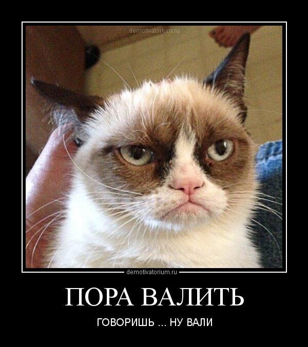 sovsem-molodie-minetchitsi-foto-video