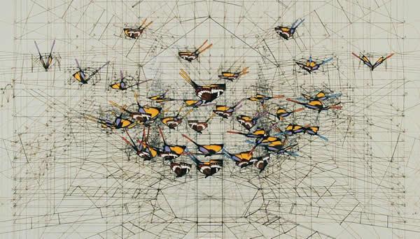 Графика Рафаэля Араужо / Rafael Araujo. Геометрия в природе. 30 фото