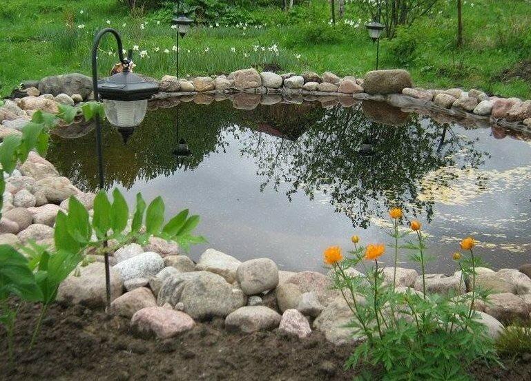 Естественный пруд на дачном участке