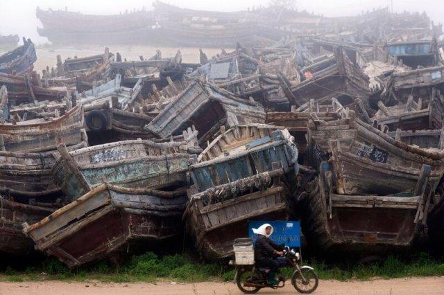 Рыбацкие лодки в порту города Циндао