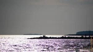 Прогулка по парку 300 летия Санкт-Петербурга и пляжу финского залива, санкт-петербург, пляж, лето, солнце, залив, вода, жара, закат, корабли, парк