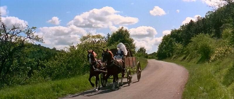 Большая прогулка (1966)