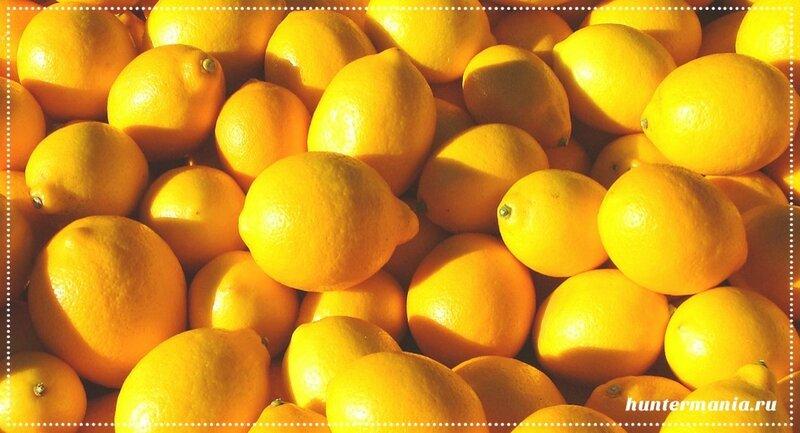 Свойства и возможности лимона