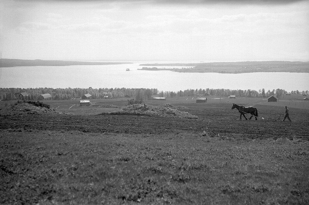 Jämtland, Krokom, Ås, Jämtland, Miljöer-Odlingslandskap-Slättbygd