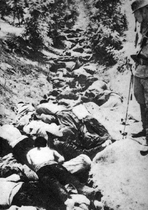 Ужасные фотографии! Архивы Нанкинской резни включены ЮНЕСКО в реестр «Памяти мира»