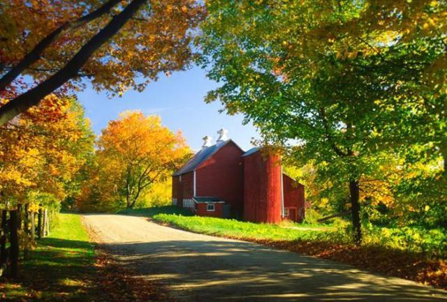 В Вермонте запретили рекламу из за красивых пейзажей штата