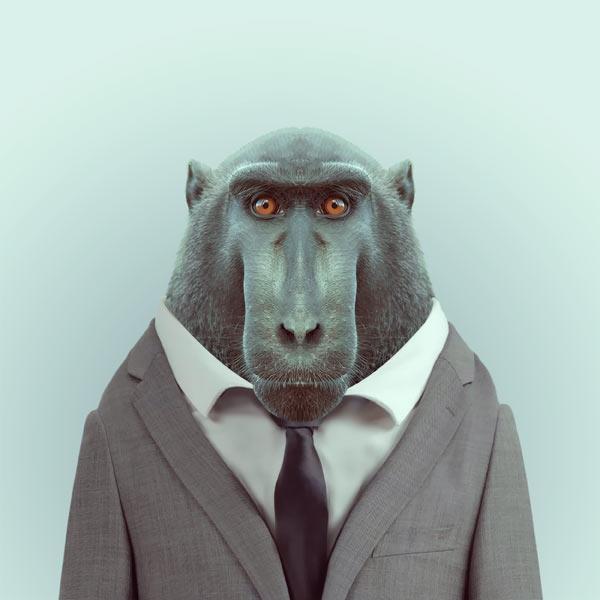 Zoo Portraits / Зоопортреты - фотосерия  Яго Партала /Yago Partal. Переключая роли