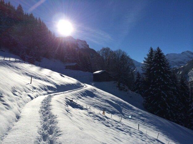 Швейцарские горы