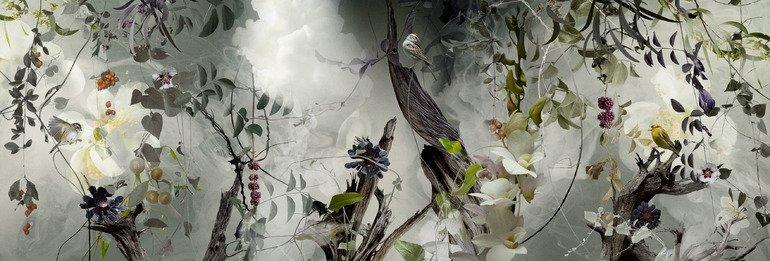"""Фотограф Ysabel LeMay / Изабель ЛеМэй. Фото-арт в стиле """"фьюжн"""""""