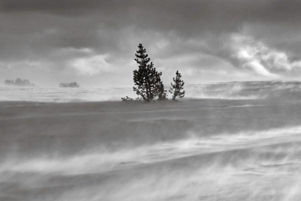 Черно-белое: заповедник Ансель Адамс (25 фото) — FotoJoin