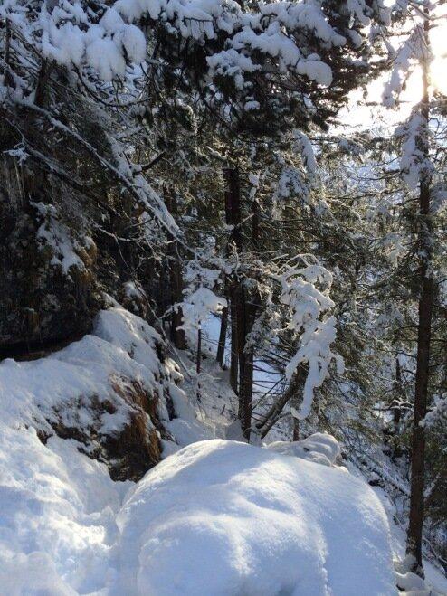 Чудесная природа Швейцарии