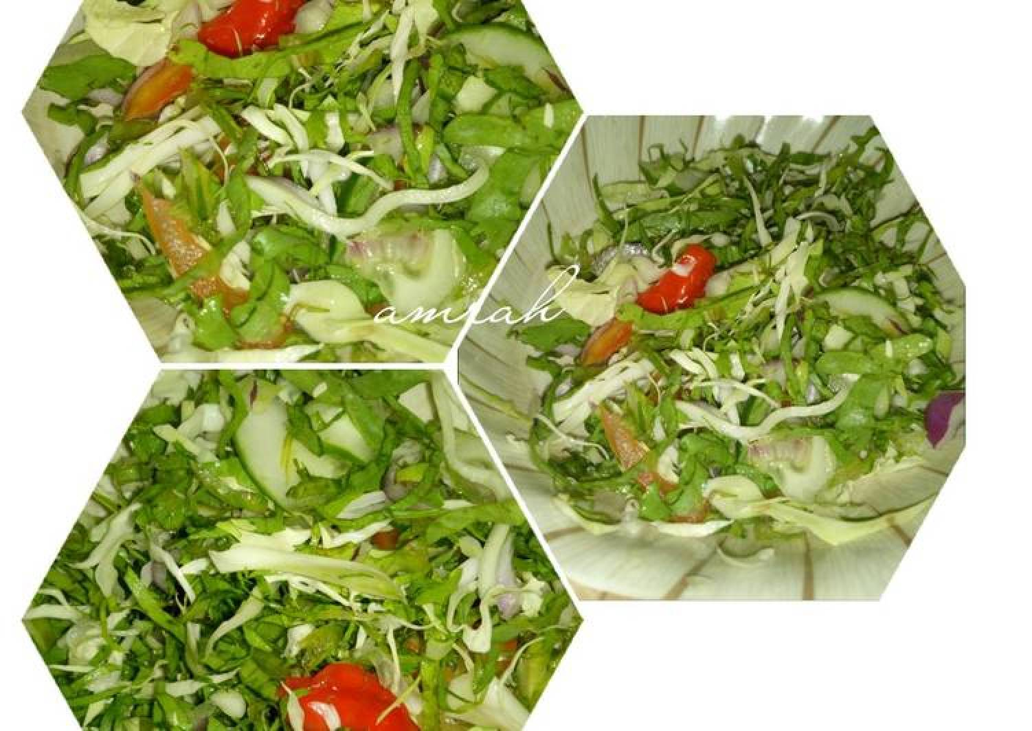 Cabbage and lettuce salad