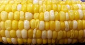 Perfect Sweet Corn