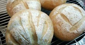 Whole Wheat Bread for Vegans or Vegetarians