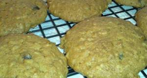 PUMPKIN-OATMEAL COOKIES with CHOCOLATE CHIPS