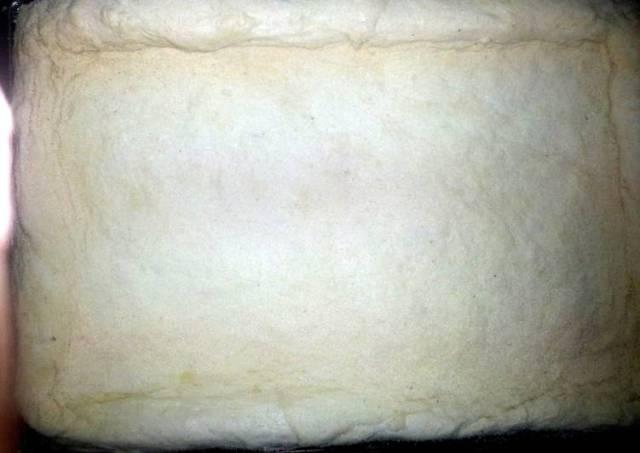 BF pizza dough