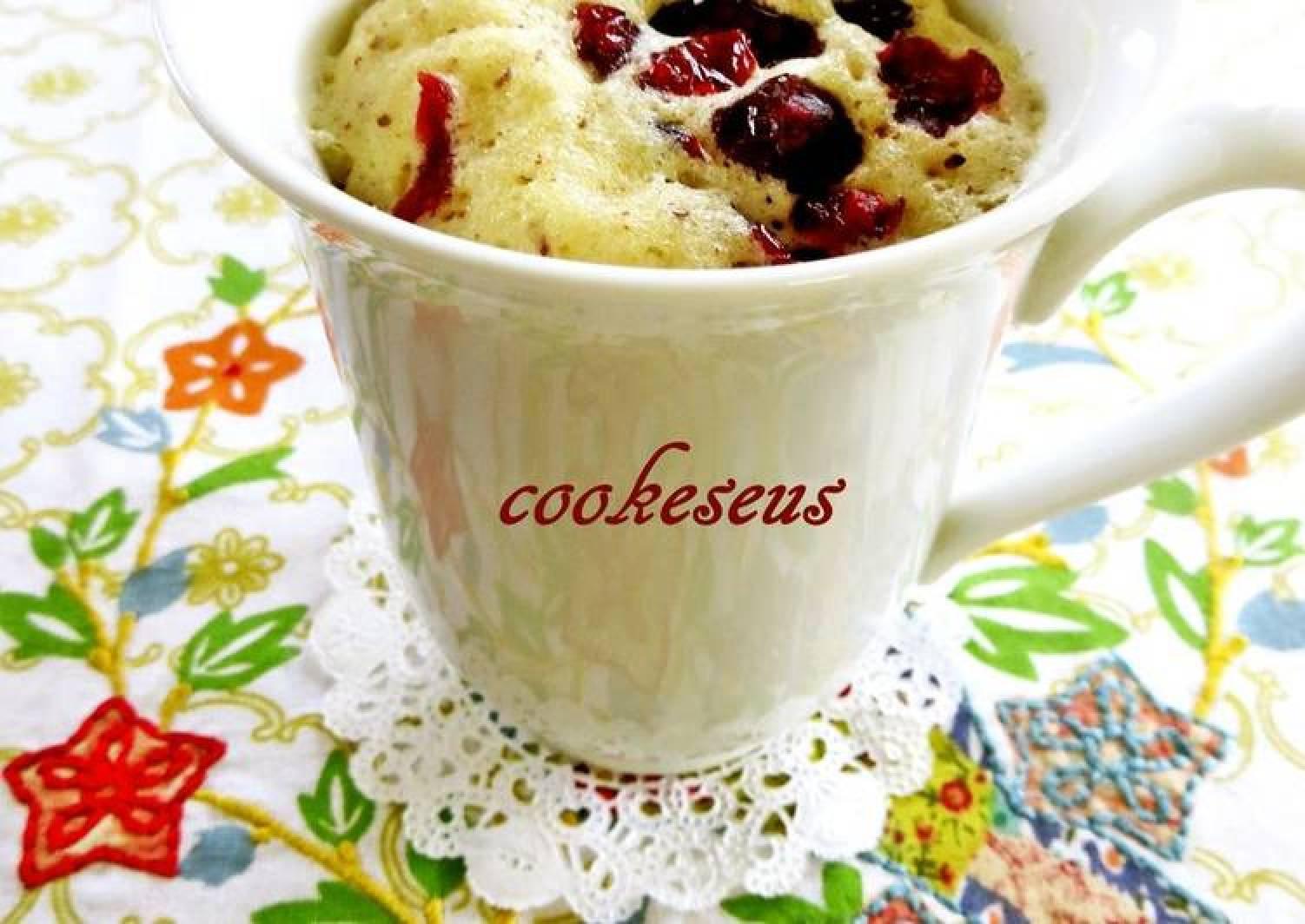 Microwave Cranberry Chocolate Cupcake in a Mug