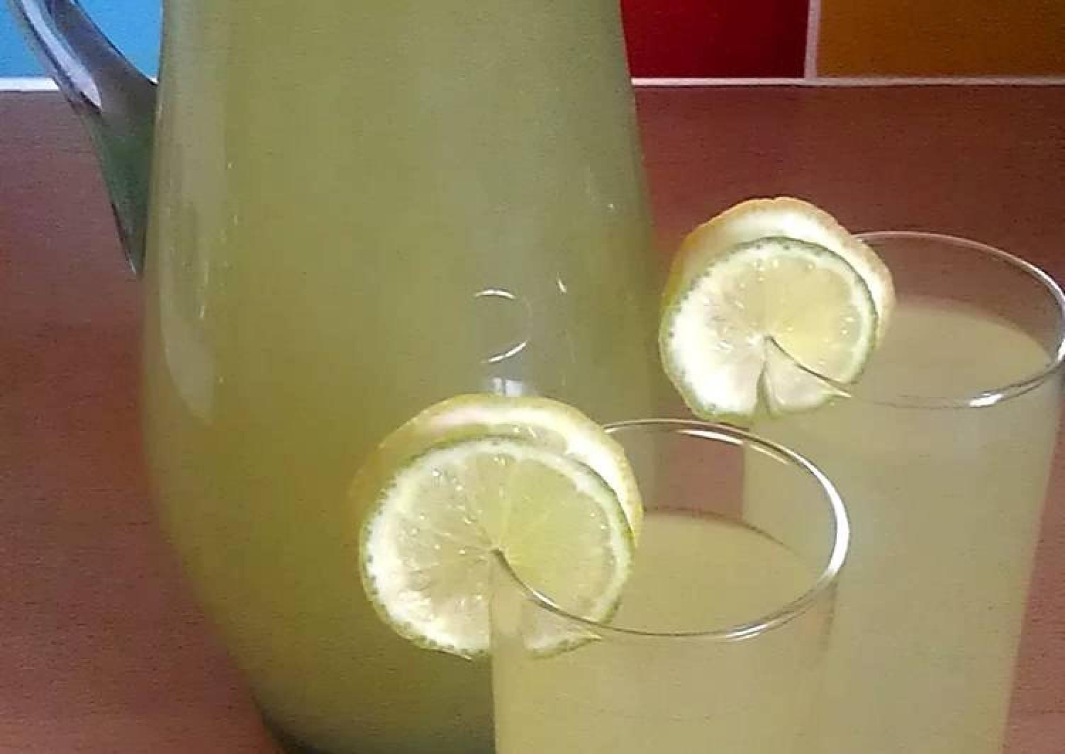 Vickys Agave Lemon-Limeade, GF DF EF SF NF