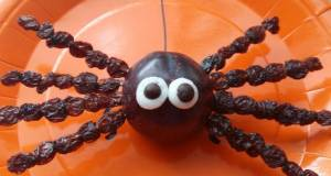 Vickys Fruity Halloween Spiders GF DF EF SF NF