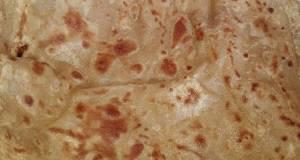 Simple crispy Paratha