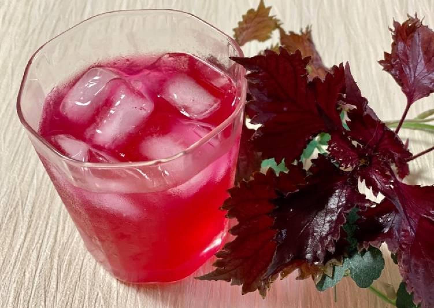 Pink Shiso Juice
