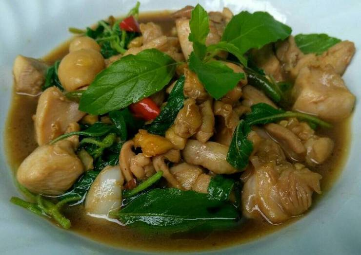 Stir Fried Chicken with Hot Basil and Chili (Phad Kaphrao Gai)