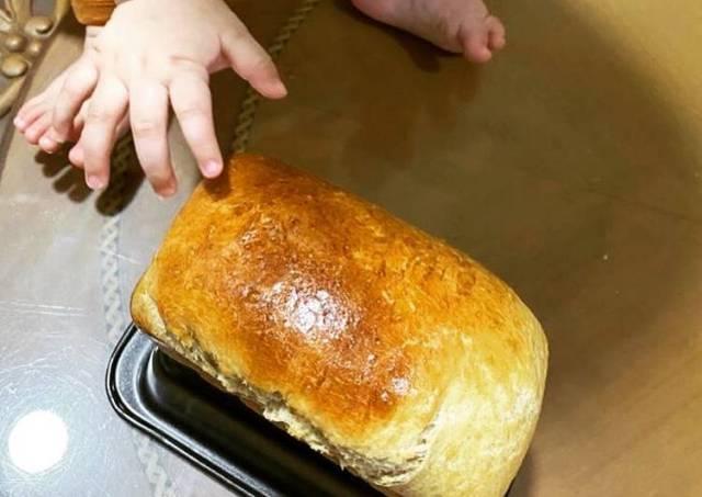 Roti buat pemula