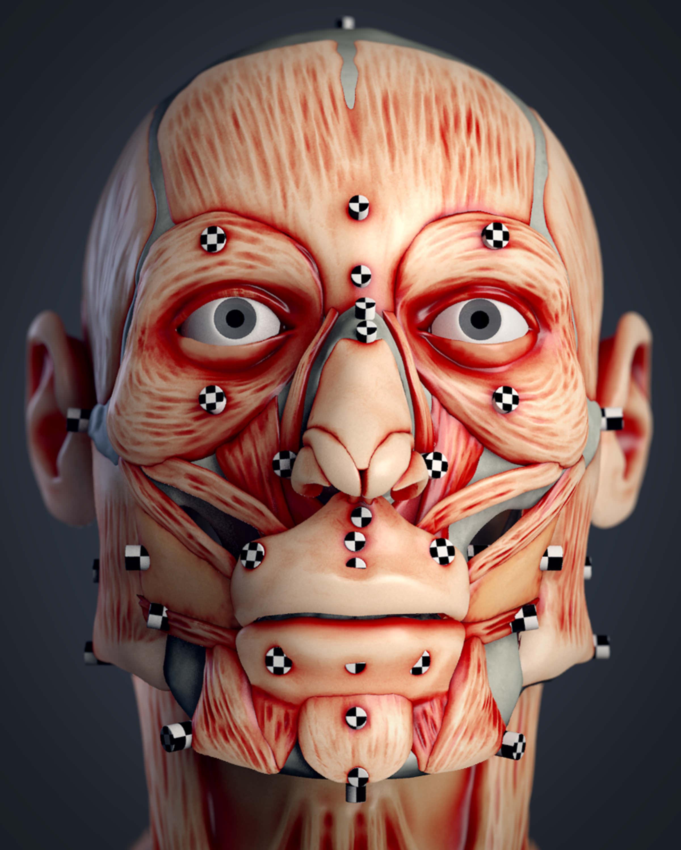 Cranial Facial Reconstruction